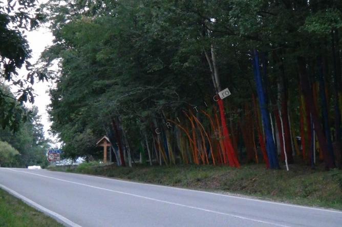 Ce facem români? Vopsim toate pădurile?