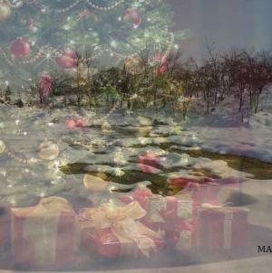 Moș Crăciun sau Moș Nicolae? Bucuria Colindelor în spitalele din București