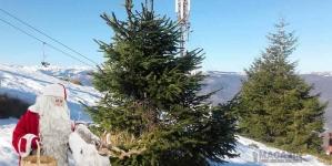 Pe 7 ianuarie se serbează CRĂCIUNUL în toată lumea ortodoxă pe stilul vechi!