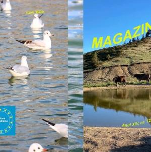 În curând va fi publicat numărul 72 al revistei MAGAZIN CRITIC!