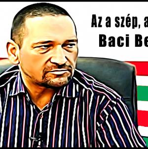 Noaptea Minții! Traian Berbeceanu candidează în alianță cu UDMR-ul!?