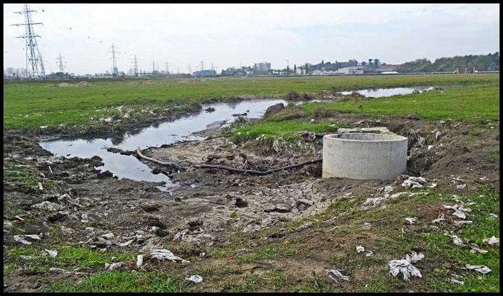 (VIDEO) Situație jenantă pentru IAȘI: un câmp plin de dejecții există în imediata apropiere a Stației de tratare a apei Chirița, care alimentează aproape jumătate din oraș